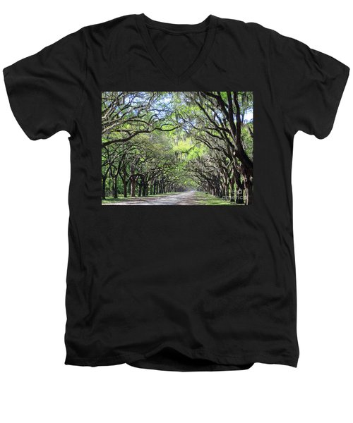 Live Oak Canopy Men's V-Neck T-Shirt