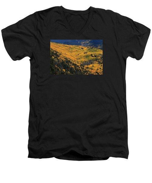Lockett Meadow Shines Men's V-Neck T-Shirt by Tom Kelly