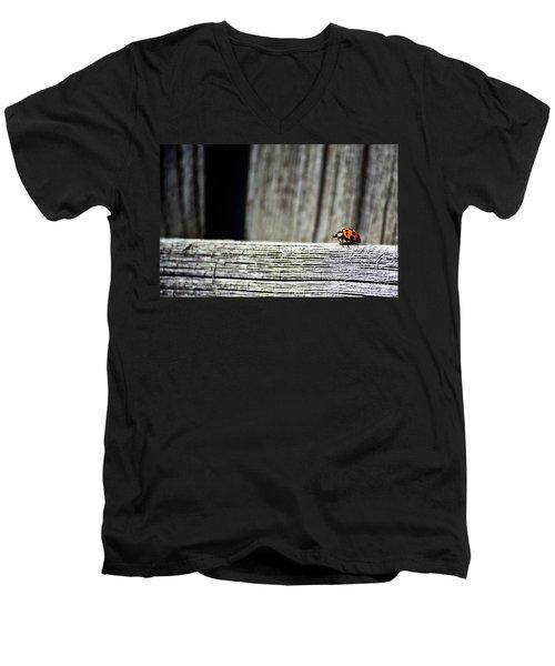 Lonely Ladybug Men's V-Neck T-Shirt