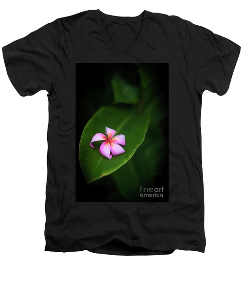 Fallen Plumeria Men's V-Neck T-Shirt