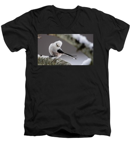 Long-tailed Look Men's V-Neck T-Shirt by Torbjorn Swenelius