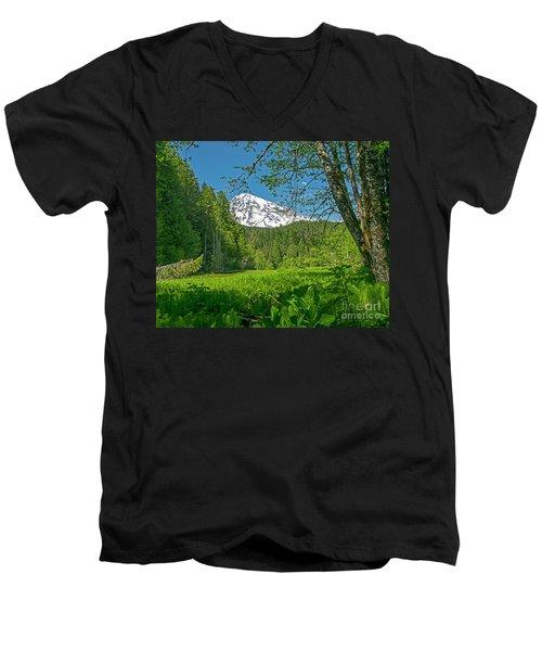 Longmire Meadows 0761 Men's V-Neck T-Shirt