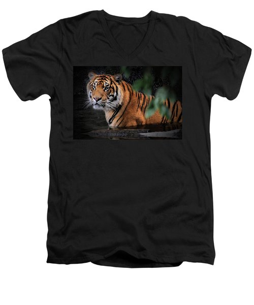 Looking Oh So Sweet Men's V-Neck T-Shirt by Kym Clarke