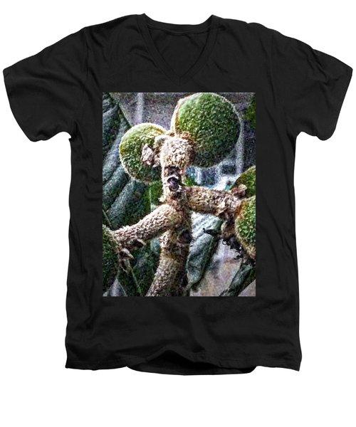 Loquat Man Photo Men's V-Neck T-Shirt