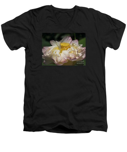 Lotus 2015 Men's V-Neck T-Shirt