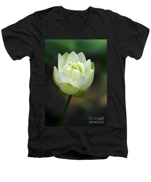 Lotus Blooming Men's V-Neck T-Shirt