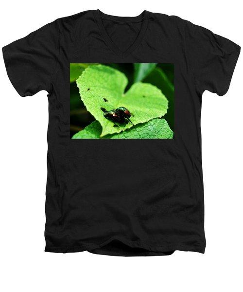 Love Bugs Men's V-Neck T-Shirt