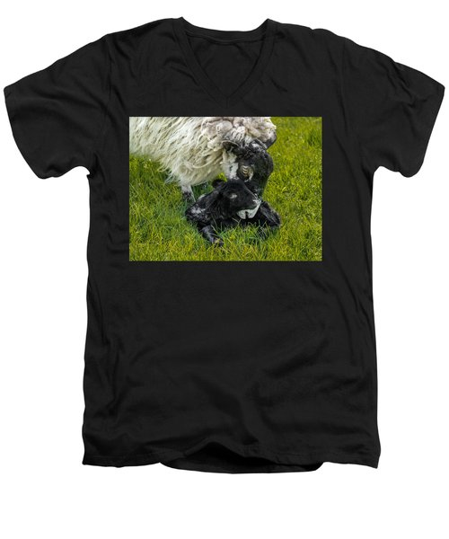 Men's V-Neck T-Shirt featuring the photograph Just Born by Nick Bywater