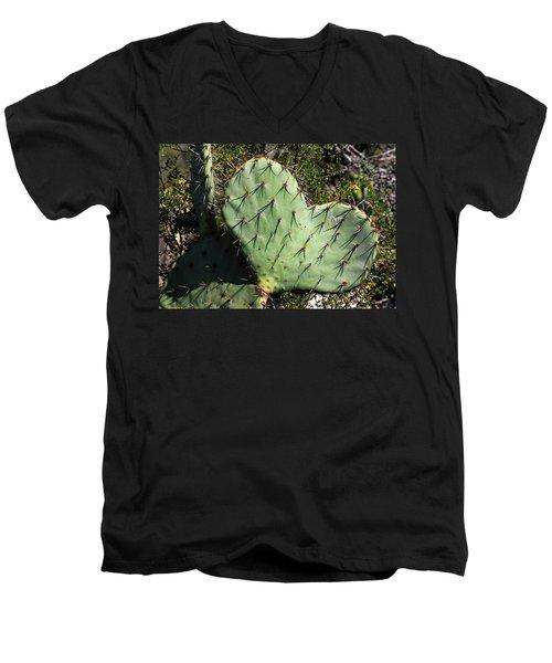 Love In The Desert Men's V-Neck T-Shirt