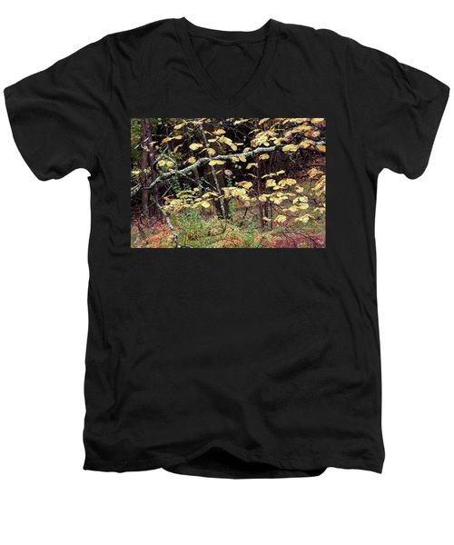 Lovely Autumn Witch Hazel -   Men's V-Neck T-Shirt