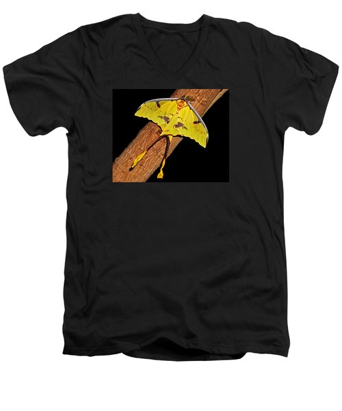Men's V-Neck T-Shirt featuring the photograph Luna Moth by Judy Vincent