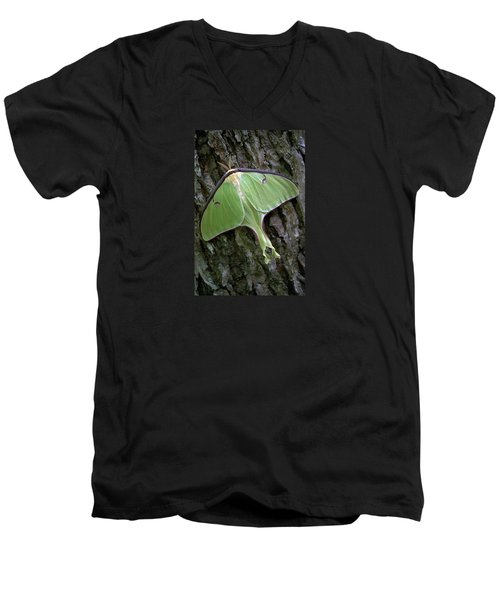 Luna Moth Men's V-Neck T-Shirt by Marie Hicks