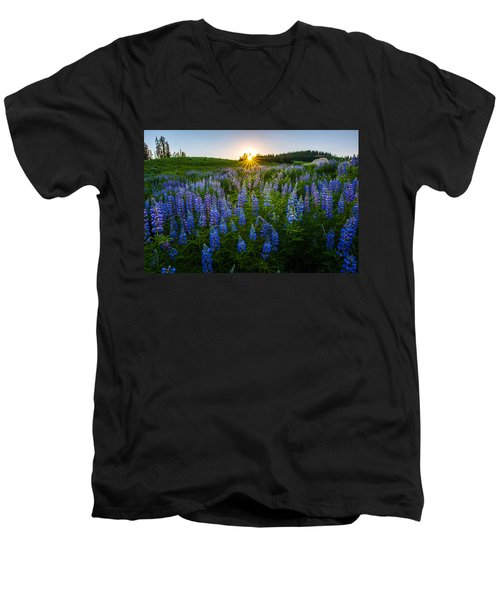 Lupine Meadow Men's V-Neck T-Shirt
