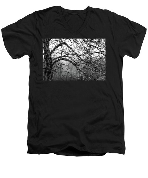 Men's V-Neck T-Shirt featuring the photograph Lure Of Mystery by Karen Wiles