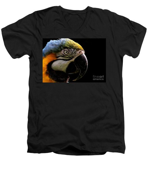 Macaw Parrot Portrait Men's V-Neck T-Shirt