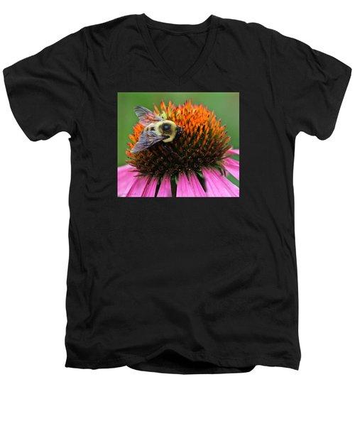 Macro Bee Men's V-Neck T-Shirt by Debra     Vatalaro