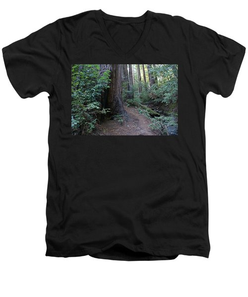 Magical Path Through The Redwoods On Mount Tamalpais Men's V-Neck T-Shirt