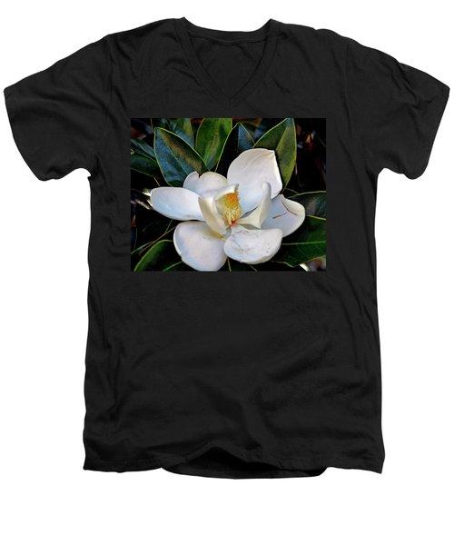 Magnolia Men's V-Neck T-Shirt by Helen Haw