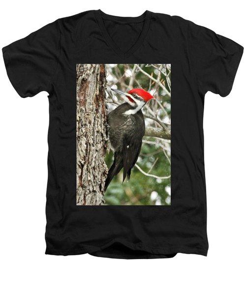 Male Pileated Woodpecker 6069. Men's V-Neck T-Shirt