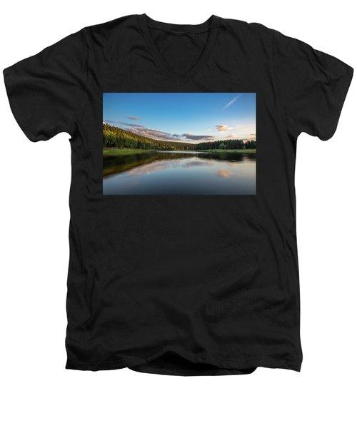 Mandelholz, Harz Men's V-Neck T-Shirt
