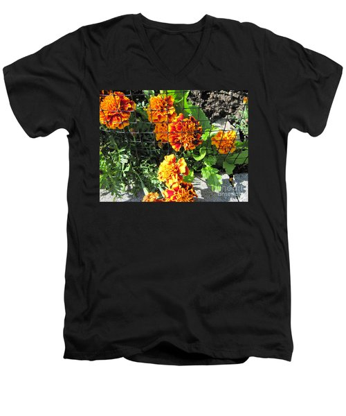 Marigolds In Prison Men's V-Neck T-Shirt