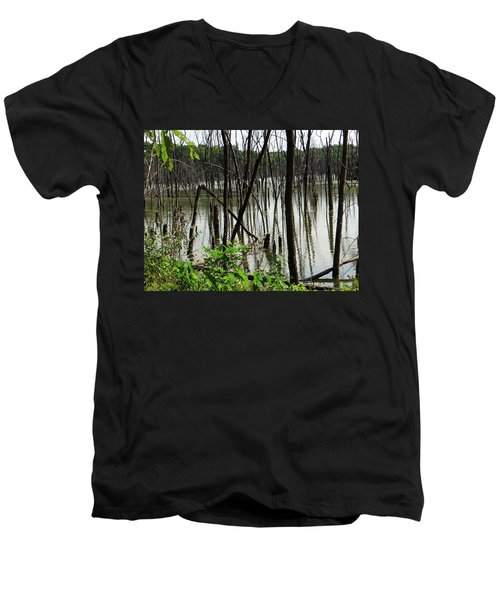 Marsh Men's V-Neck T-Shirt