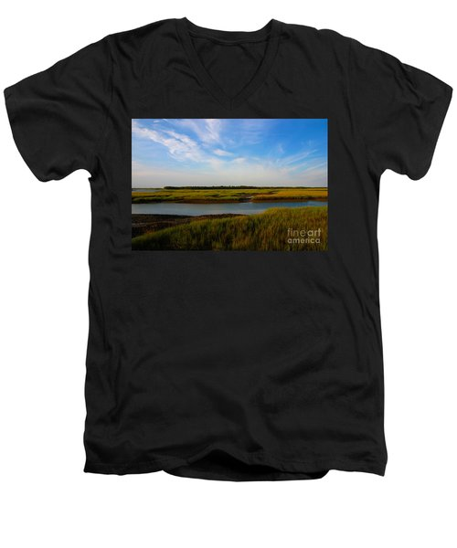 Marshland Charleston South Carolina Men's V-Neck T-Shirt