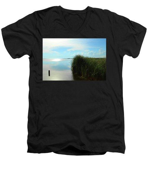 Marshland Men's V-Neck T-Shirt by David Stasiak
