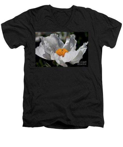 Matilija Poppy Men's V-Neck T-Shirt