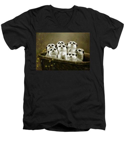 Meerkats Men's V-Neck T-Shirt