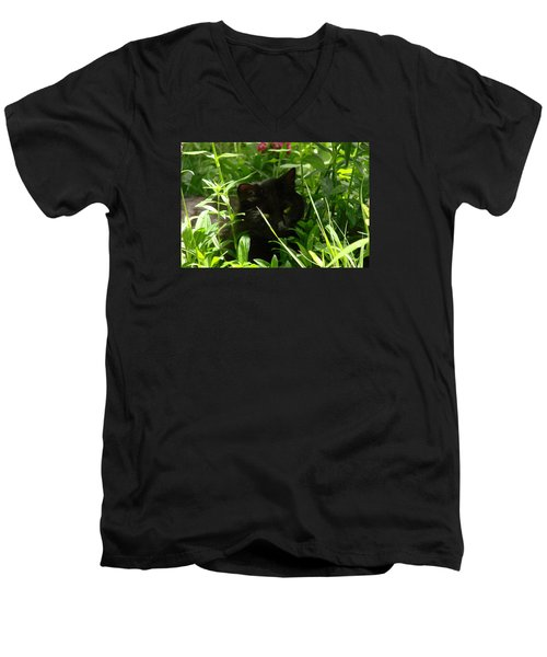 Meow Men's V-Neck T-Shirt