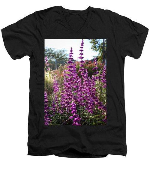 Mexican Sage Men's V-Neck T-Shirt