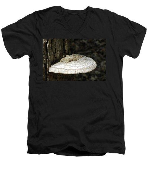 Men's V-Neck T-Shirt featuring the photograph Michigantree Fungi by LeeAnn McLaneGoetz McLaneGoetzStudioLLCcom