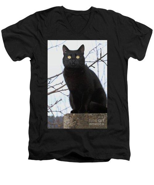 Midi 2 Men's V-Neck T-Shirt