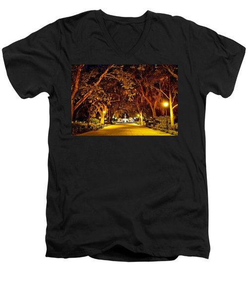 Midnight In The Garden Men's V-Neck T-Shirt