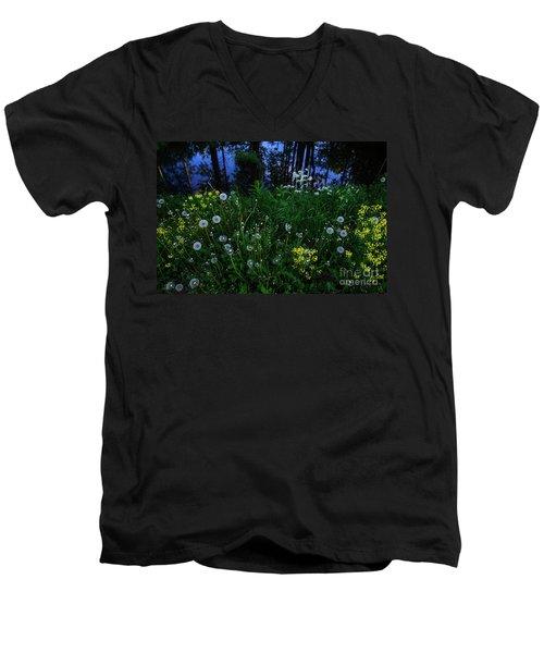 Midsummer Night's Magic Men's V-Neck T-Shirt