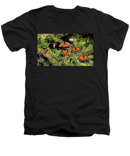 Men's V-Neck T-Shirt featuring the photograph Migrating Monarchs by AJ Schibig