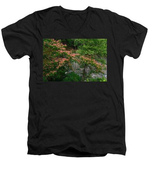Mimosa On The Dan River Men's V-Neck T-Shirt by Kathryn Meyer