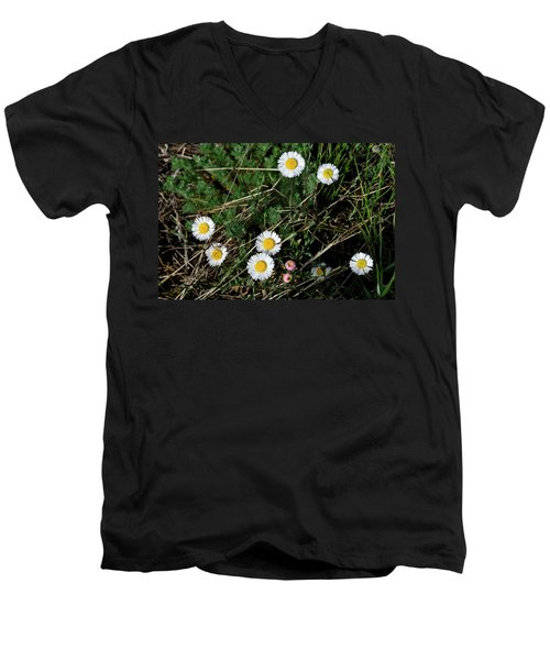Mini Daisies Men's V-Neck T-Shirt