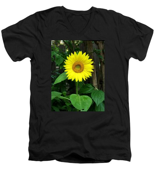 Men's V-Neck T-Shirt featuring the photograph Miss Sunshine by Carol Sweetwood