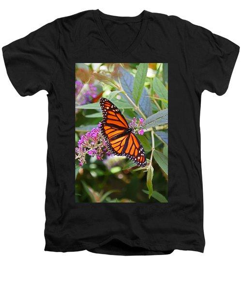 Monarch Butterfly 2 Men's V-Neck T-Shirt by Allen Beatty