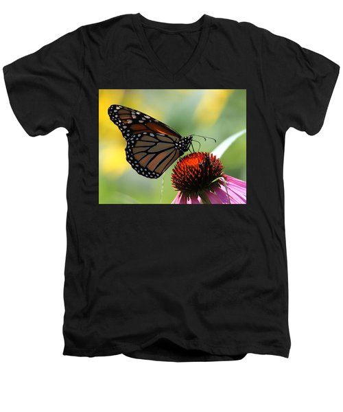Monarch Butterfly Stony Brook New York Men's V-Neck T-Shirt by Bob Savage