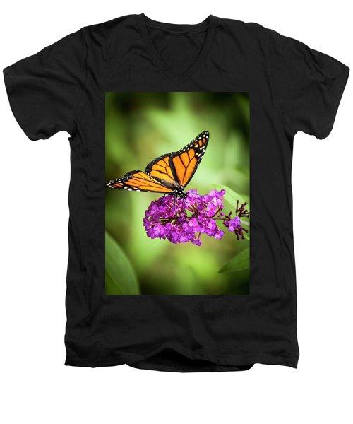 Monarch Moth On Buddleias Men's V-Neck T-Shirt