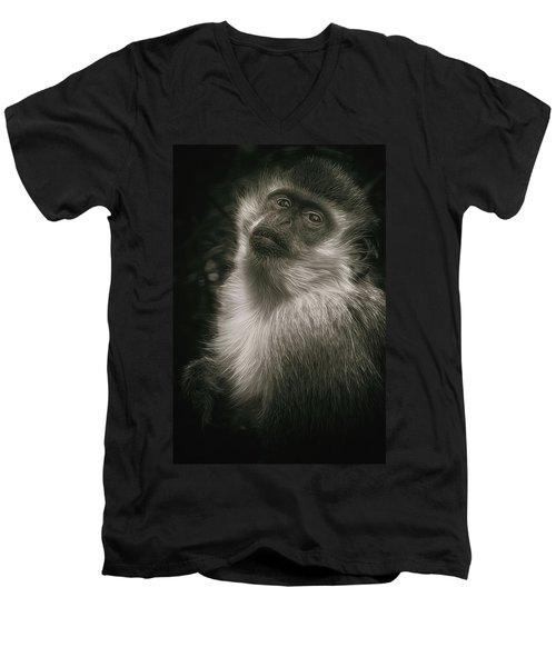 Monkey Portrait Men's V-Neck T-Shirt