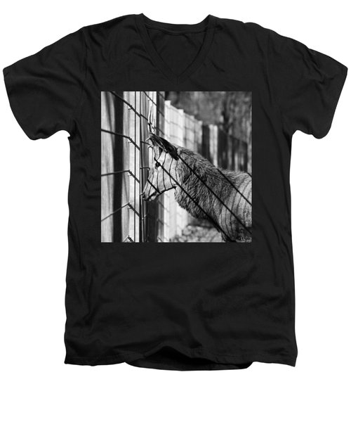 #monochrome #canon #cage #blackandwhite Men's V-Neck T-Shirt by Mandy Tabatt