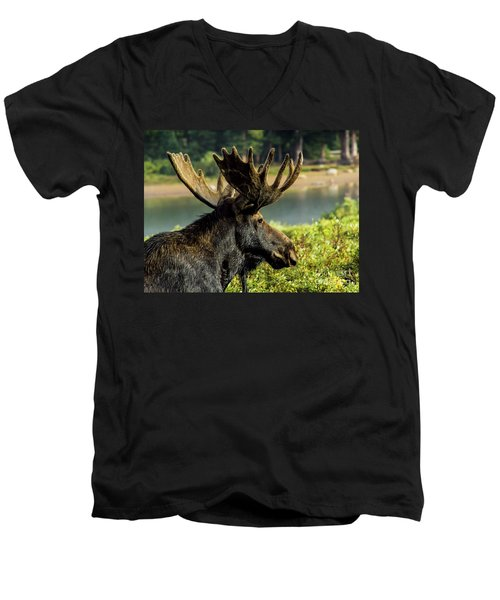 Moose Adventure Men's V-Neck T-Shirt by Steven Parker