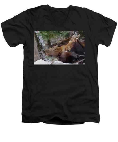 Moose Family Lunch Men's V-Neck T-Shirt