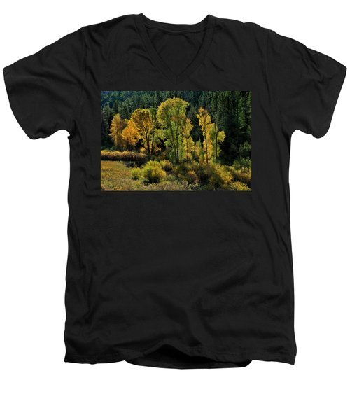Morning Cottonwoods Men's V-Neck T-Shirt