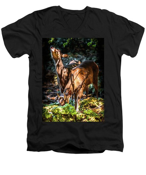 Morning Light Of Dawn Men's V-Neck T-Shirt by Karen Wiles