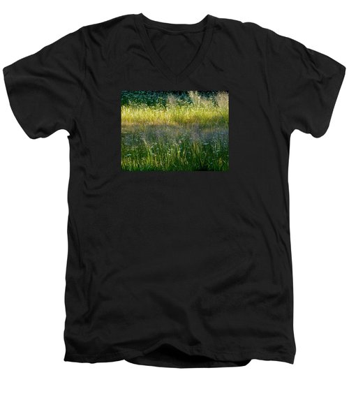 Morning Light On Grant Meadow Men's V-Neck T-Shirt by Amelia Racca